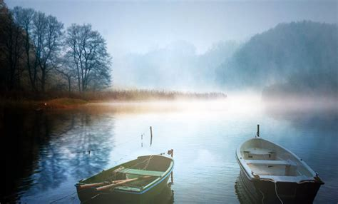 landscapes   fog ducks scotland night city