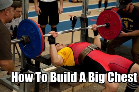 bench press does not build a bigger chest the keys to building a big chest