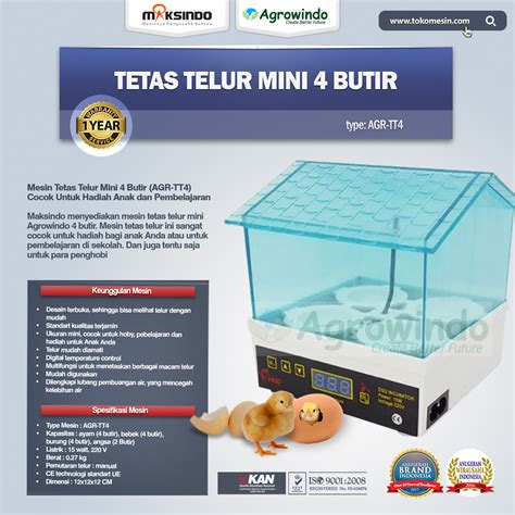 Mesin Penetas Telur Ayam Mini jual tetas telur mini 4 butir agr tt4 di pekanbaru