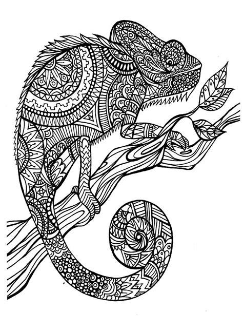 art therapy  disegni da stampare  colorare