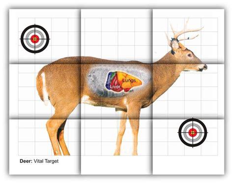 Printable Deer Vital Targets | deer vitals target free printable shooting targets