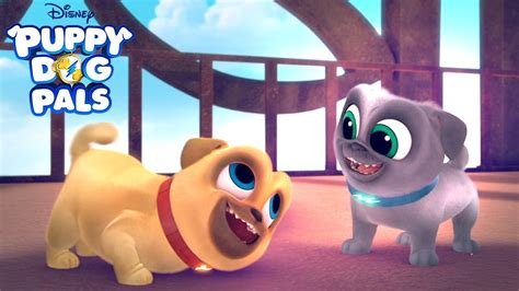 puppy pals new series puppy pals disney junior
