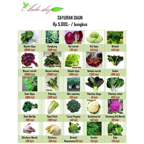 Benih Bibit Kailan White benih sayuran shopee indonesia
