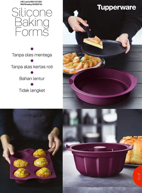 Tupperware Activity katalog activity tupperware november 2016 rashla katalog