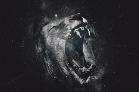 lion wallpaper   beautiful full hd