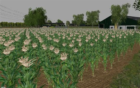 Richards Ls by Mais Texture V 1 0 For Fs 15 Mod