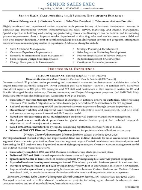 Resume Exles For Sales Executive Executive Resume Template Information