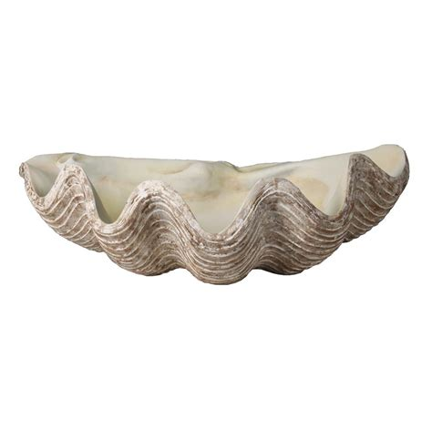 decorative shell bowls la mer coastal decorative clam shell bowl sculpture