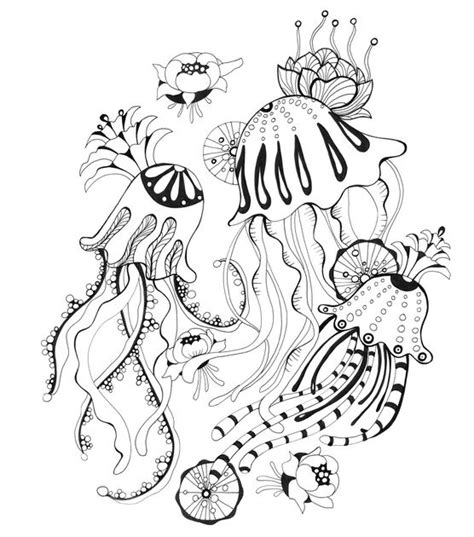 jellyfish coloring page for adults jelly fish adult free coloring page adults animals