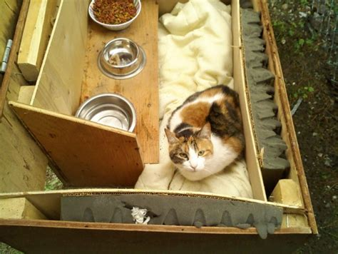 How To Keep Barn Cats Warm In Winter outdoor cat house plans winter furnitureplans