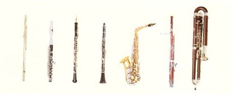 wind section instruments woodwind