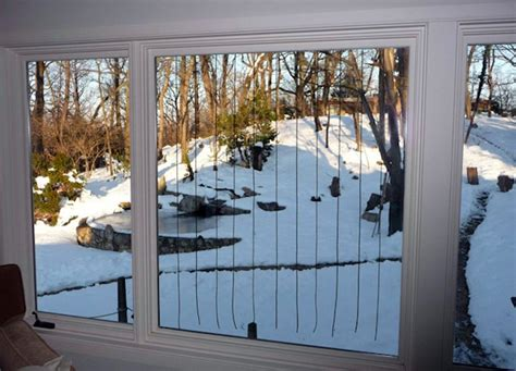Window Decals Deter Birds by Field Tests Show Parachute Cords Deter Bird Window