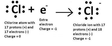 How Many Protons Does Cl 10 Answers The Number Of Valence Electron In A Chloride