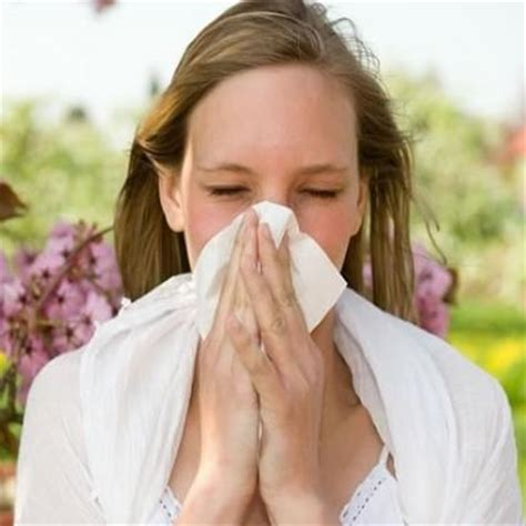 allergies coughing do allergies make you cough new health advisor