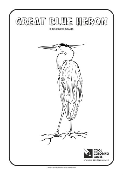 great blue heron coloring page cool coloring pages
