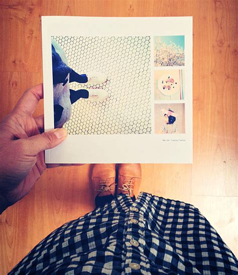 instagram picture book instagram book the new domestic
