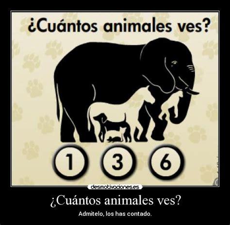 imagenes de actividades mentales 191 cu 225 ntos animales ves desmotivaciones