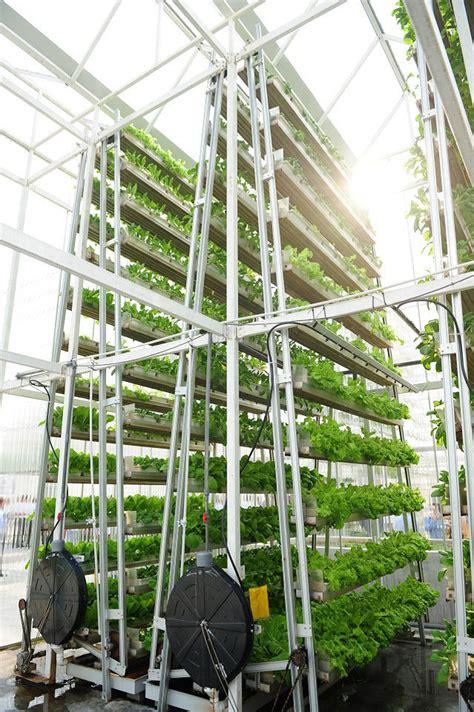 sky urban vertical farming system wins  index award