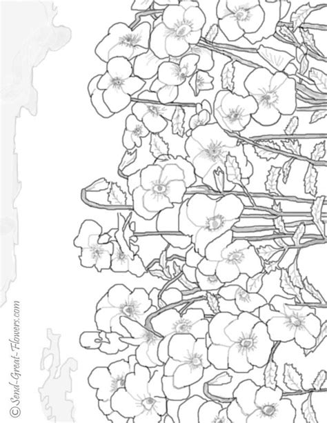 advanced winter coloring pages advanced color pages coloring home