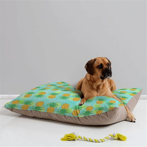 pineapple dog bed pineapple dog bed 28 images cute pineapple pet kennel