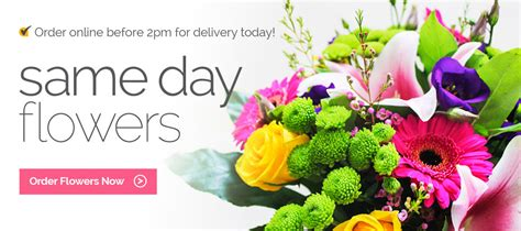 Send Flowers Same Day by Flower Delivery Canada Send Flowers Same Day By Florists