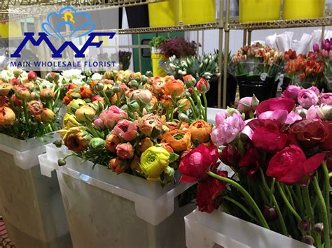 Wholesale Florist by Wholesale Florist Take A Look In Our Cooler