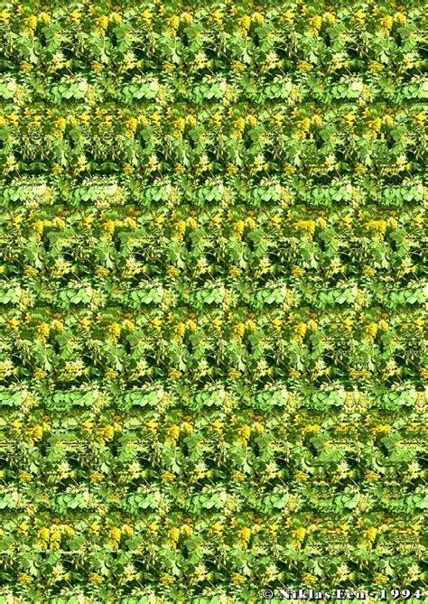 imagenes 3d ocultas complejas estereogramas y t 250 qu 233 ves im 225 genes taringa