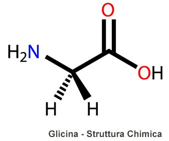ornitina alimenti glicina
