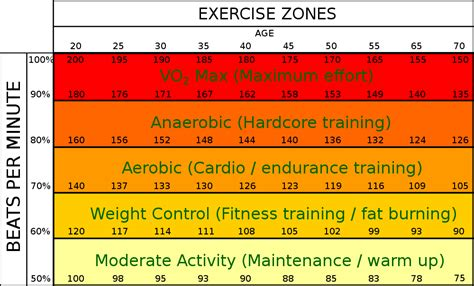 weight loss zone rate best rate to burn fitness health