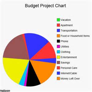 budget project chart imgflip