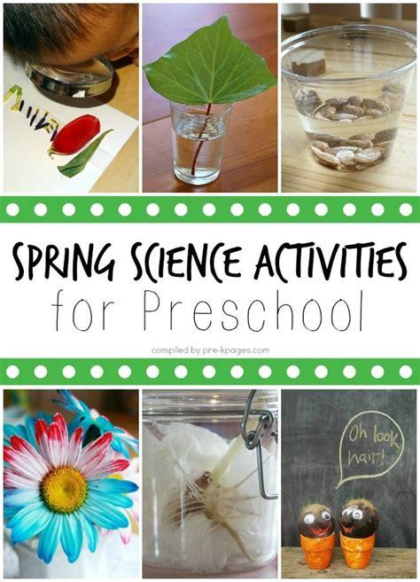 kindergarten activities on spring spring science activities for preschoolers activities