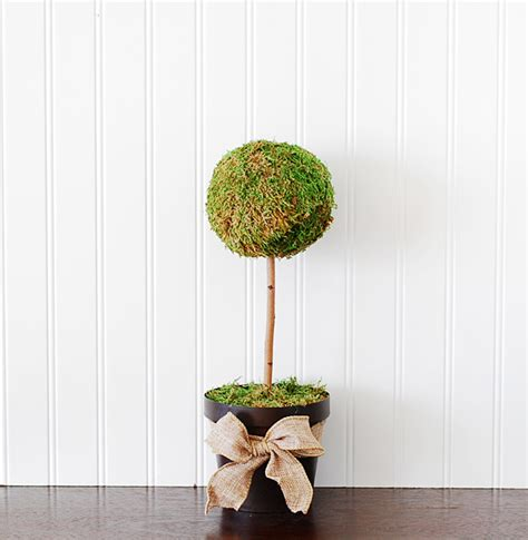 how to create a topiary how to make a moss topiary tree