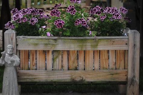 Shrubs For Planter Boxes by Planter Boxes As Attractive Garden Focal Points Www