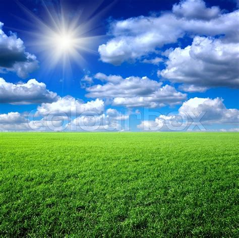 My House Plans by Green Grass The Blue Sky And White Clouds Stock Photo