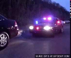 police car flashing lights gif police terror gif find share on giphy