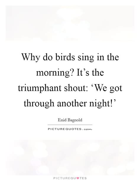 morning birds quotes sayings morning birds picture quotes