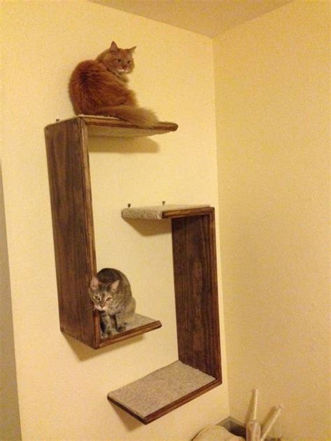 Cat Shelf Ideas by Cat Tree Hanging Shelf Unit Set Of 2 Hunt S And