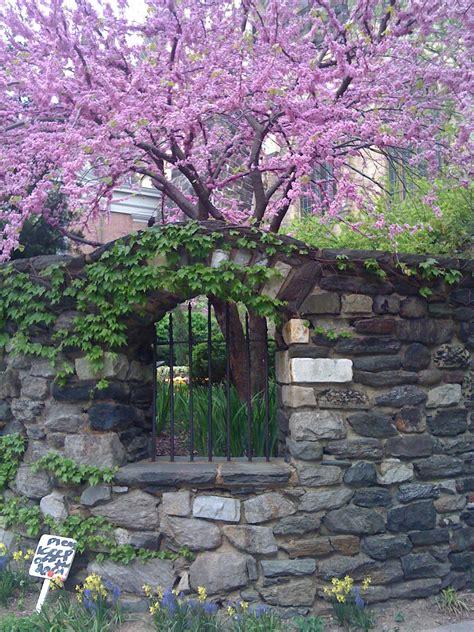 saint john  divine  secret garden  morningside