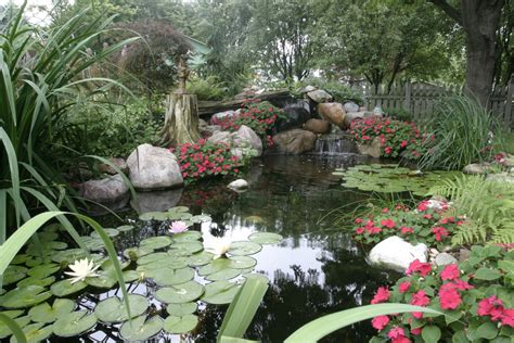 Water Gardening by Ponds And Pondless Water Features For Sale The Pond Doctor