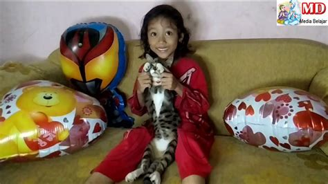 baby shark kucing baby shark dance song funny cat chyko qyla balon