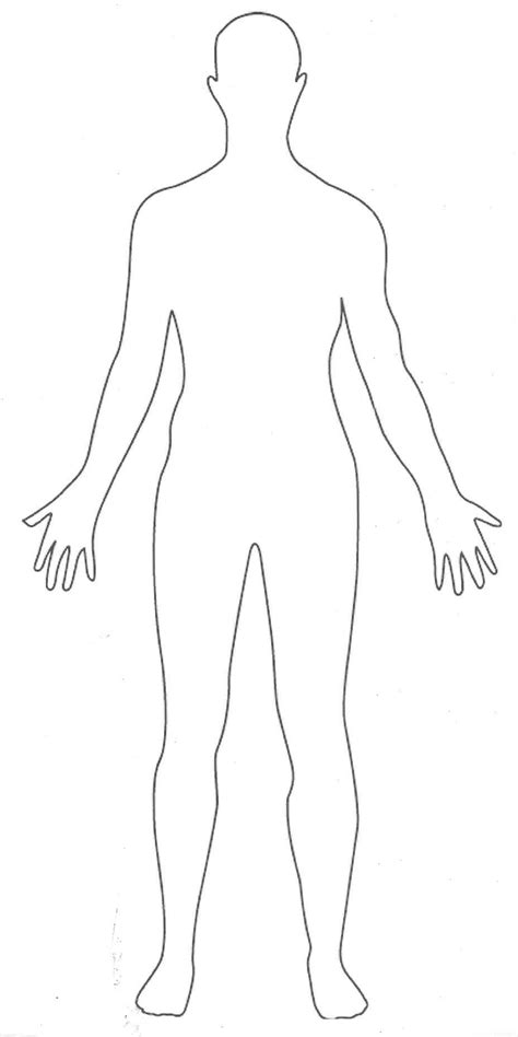 Outline Picture Parts Of The Human Body Great For Students To Draw Their Interpretation Of Human Template