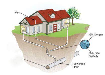 reasons blocked sewer pipe perfection plumbers