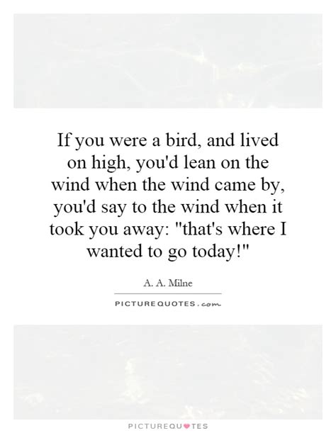 don t get high said the bird to the fly books if you were a bird and lived on high you d lean by a a