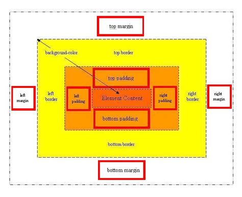 css tutorial margin padding css paddings and margins basic css tutorials