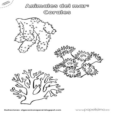 imagenes de animales del mar animales del mar para imprimir y colorear papelisimo