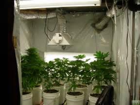 grow le r 233 flecteurs et balanceurs pour les jardins hid graines