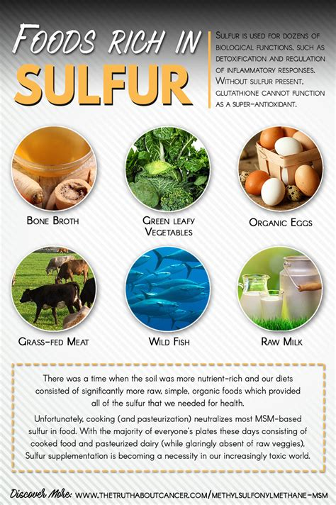 foods for foods high in sulfur recipes food
