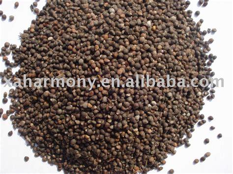 perilla seed white brown grey safflower seed milk