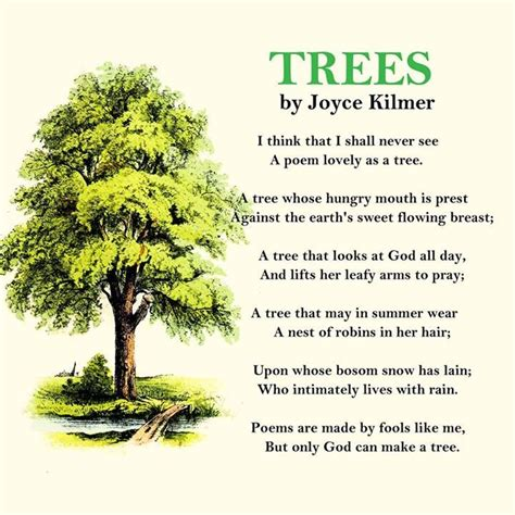 tree biography in english image result for contemporary poems about trees poems