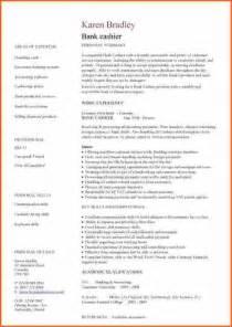6  professional curriculum vitae format sample   Budget